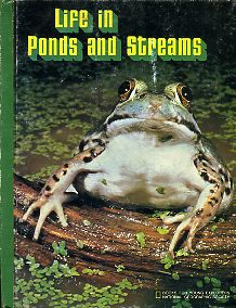 Life in Ponds and Streams